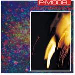 P-MODEL / ANOTHER GAME